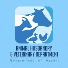 Animal Husbandry Recruitment